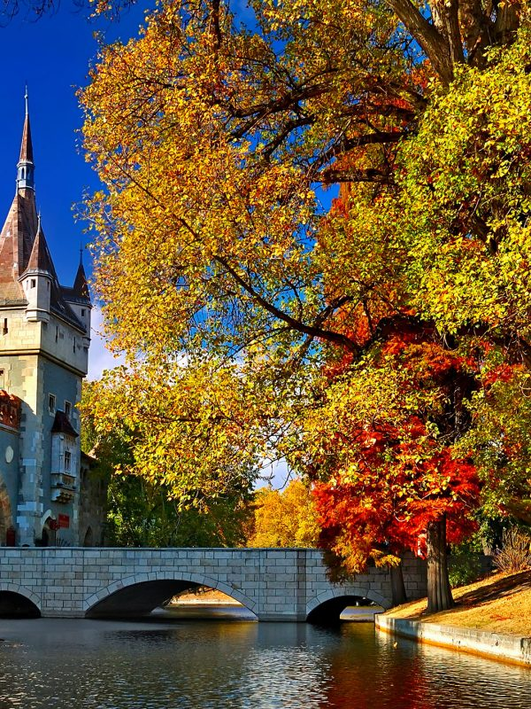 Budapest Private Walking Tour – Vajdahunyad Castle