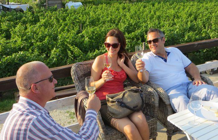 Half-day private wine-tasting tour of Etyek